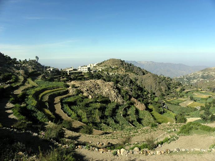 yemen_Jabal_Sabir1_agriculture_adj_690
