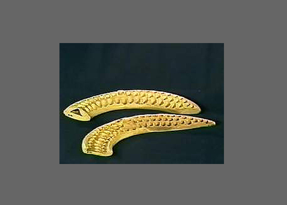 Ivory from the Chalcolitic Period